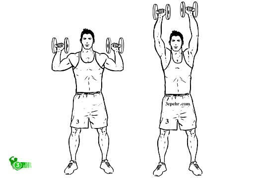 10 حرکت تا رسیدن به تناسب اندام در منزل ، این فرد در حال انجام دادن دو مرحله پرس سرشانه با دمبل است که از دو مرحله ای بالا بردن و پایین آوردن است
